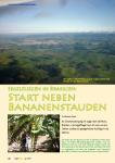 Start neben Bananenstauden